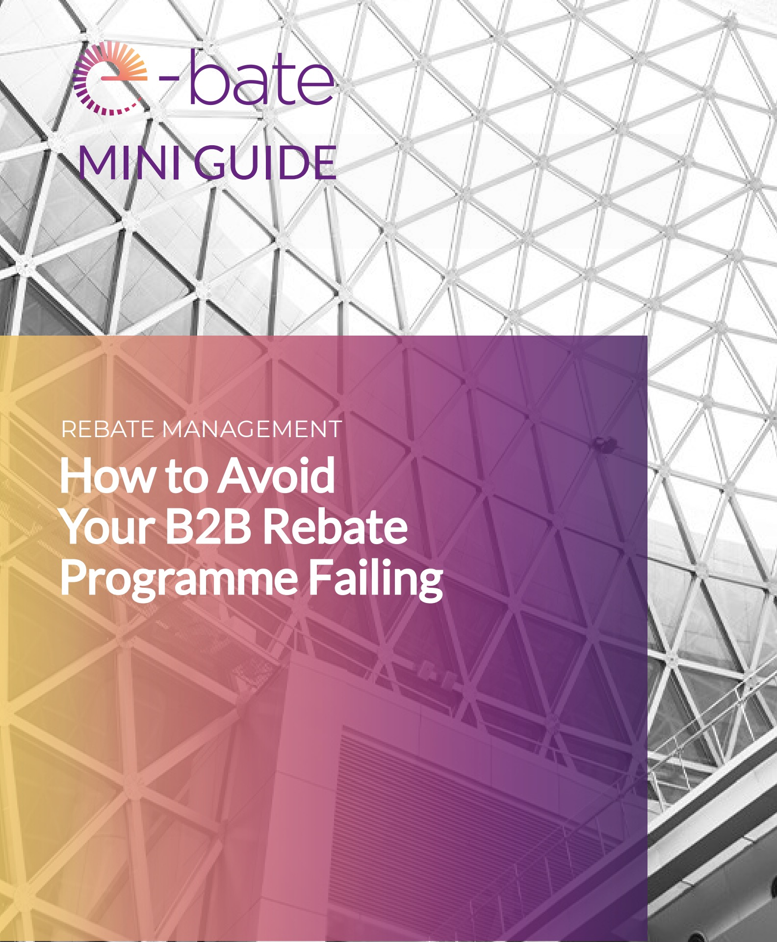 Mini-Guide on How to Avoid Your B2B Rebate Programme Failing