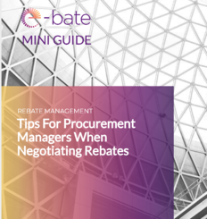 mini_guide_tips_for_procurement_managers_negotiating_rebates_cover_image